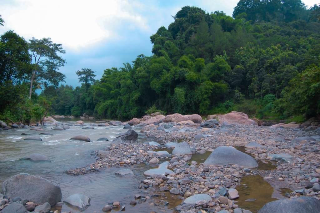 sungai-di-area-penangkaran-rusa